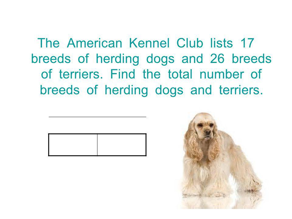 The American Kennel Club lists 17 breeds of herding dogs and 26 breeds of terriers.