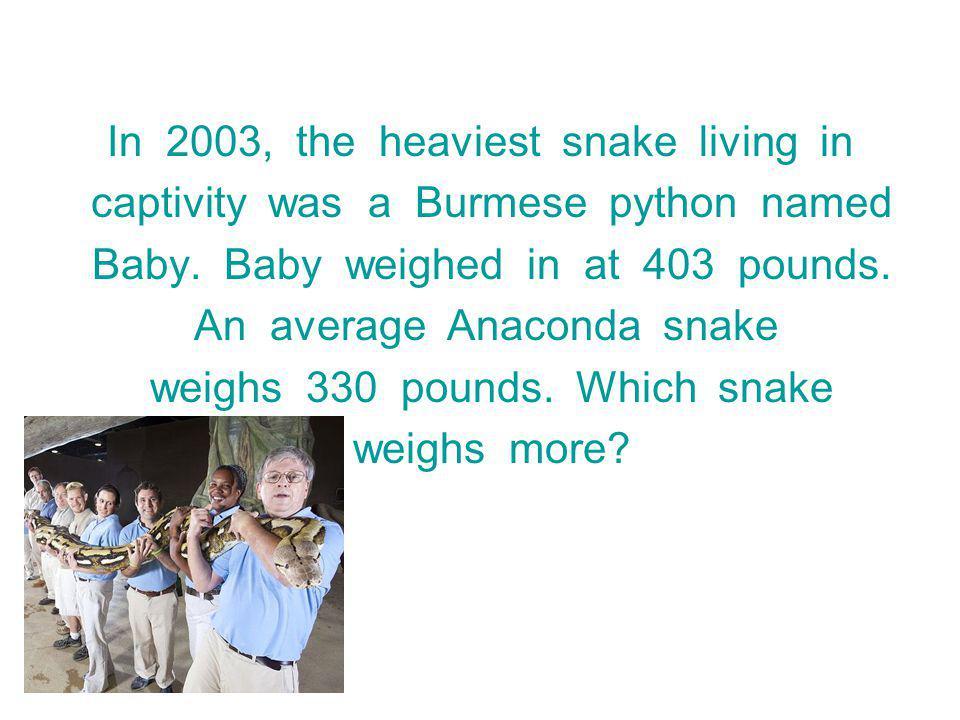 In 2003, the heaviest snake living in