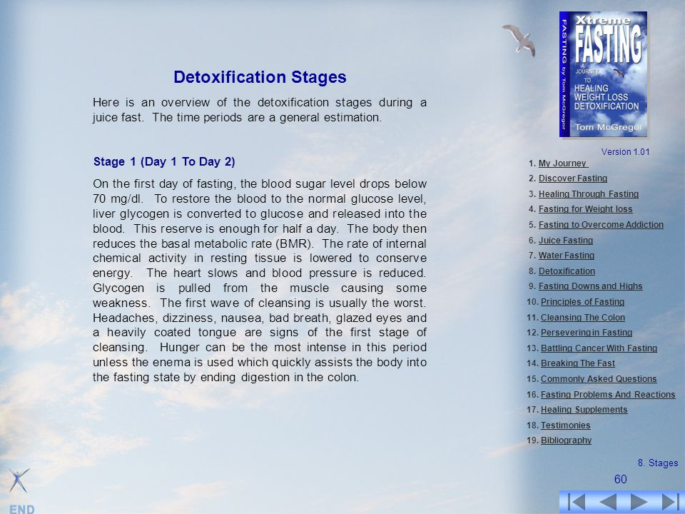 Detoxification Stages