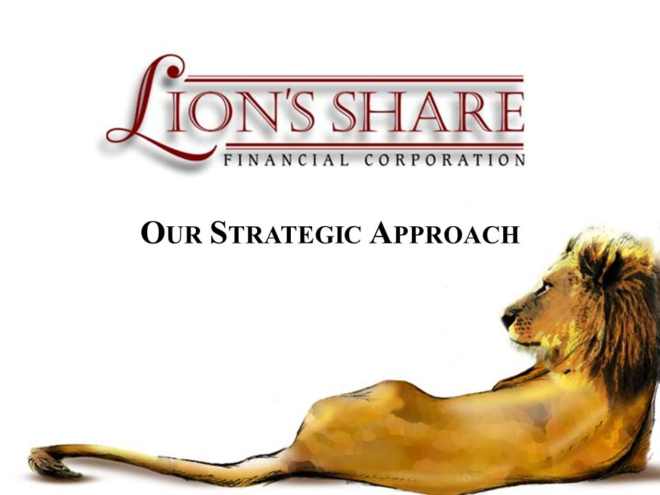 OUR STRATEGIC APPROACH
