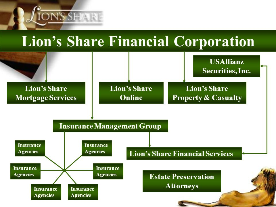 Lion's Share Financial Corporation