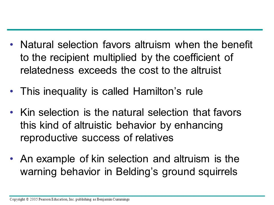Natural selection favors altruism when the benefit to the recipient multiplied by the coefficient of relatedness exceeds the cost to the altruist