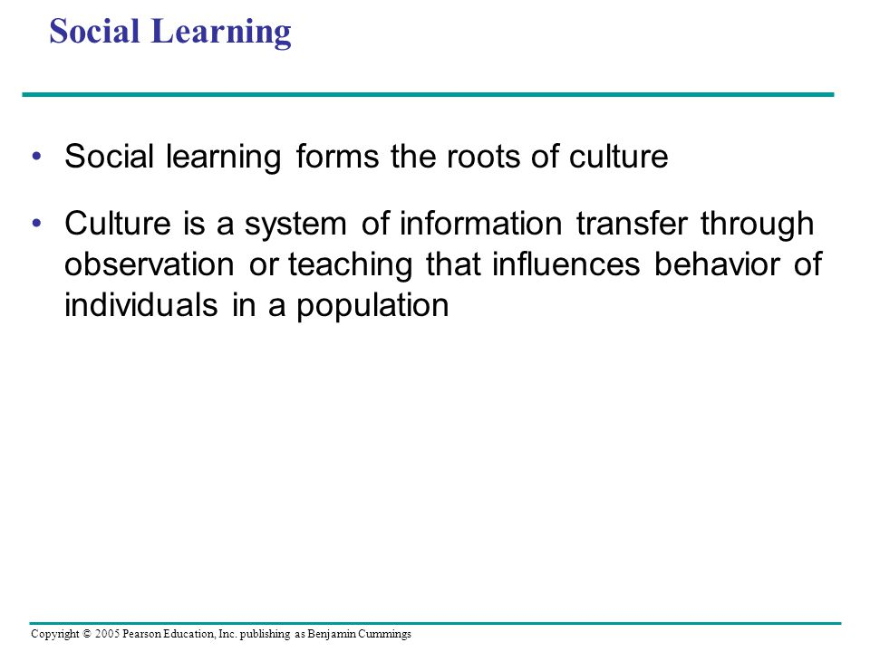 Social Learning Social learning forms the roots of culture