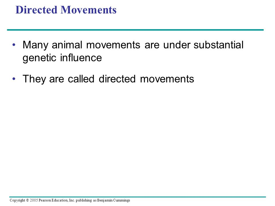 Directed Movements Many animal movements are under substantial genetic influence.