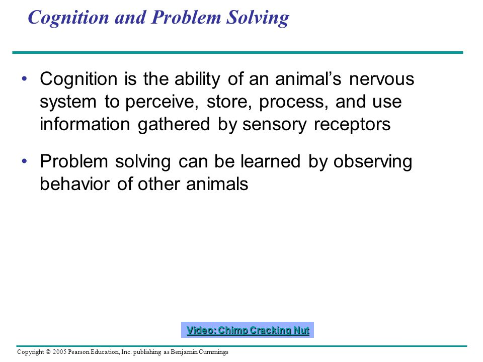 Cognition and Problem Solving