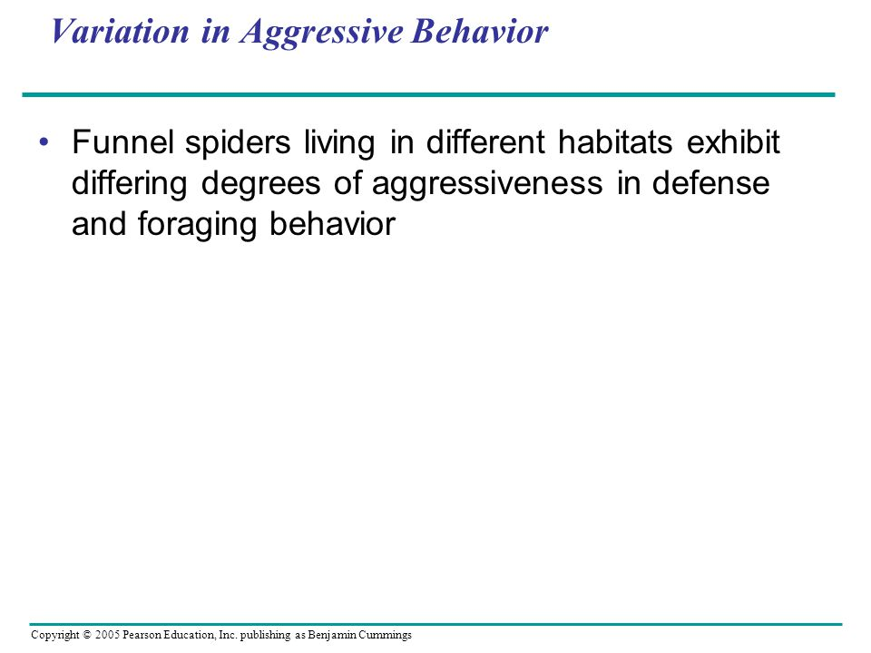 Variation in Aggressive Behavior