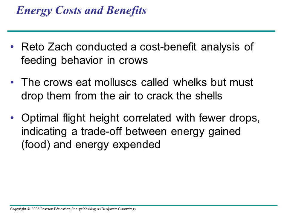 Energy Costs and Benefits