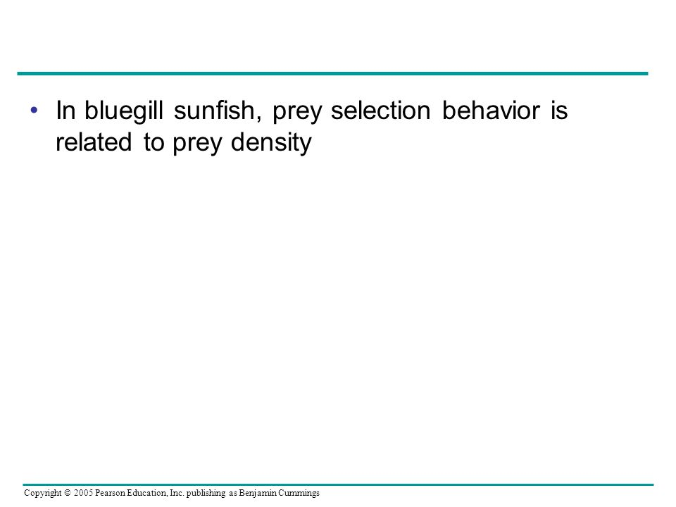 In bluegill sunfish, prey selection behavior is related to prey density