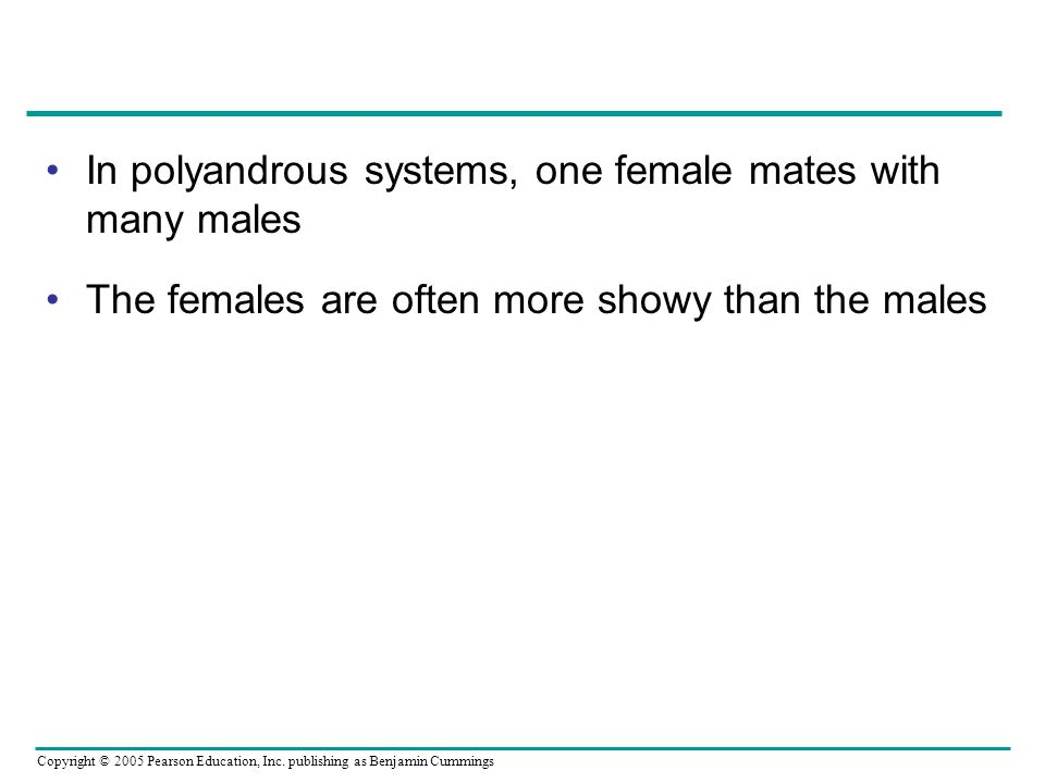 In polyandrous systems, one female mates with many males
