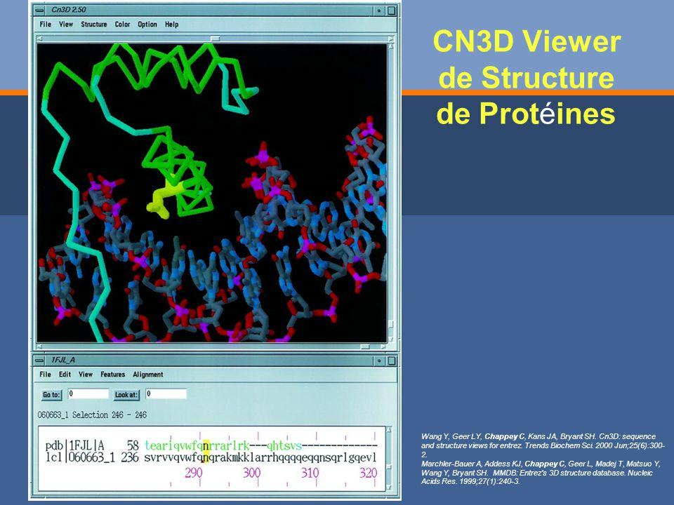 CN3D Viewer de Structure de Protéines