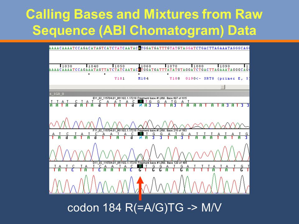 Calling Bases and Mixtures from Raw Sequence (ABI Chomatogram) Data