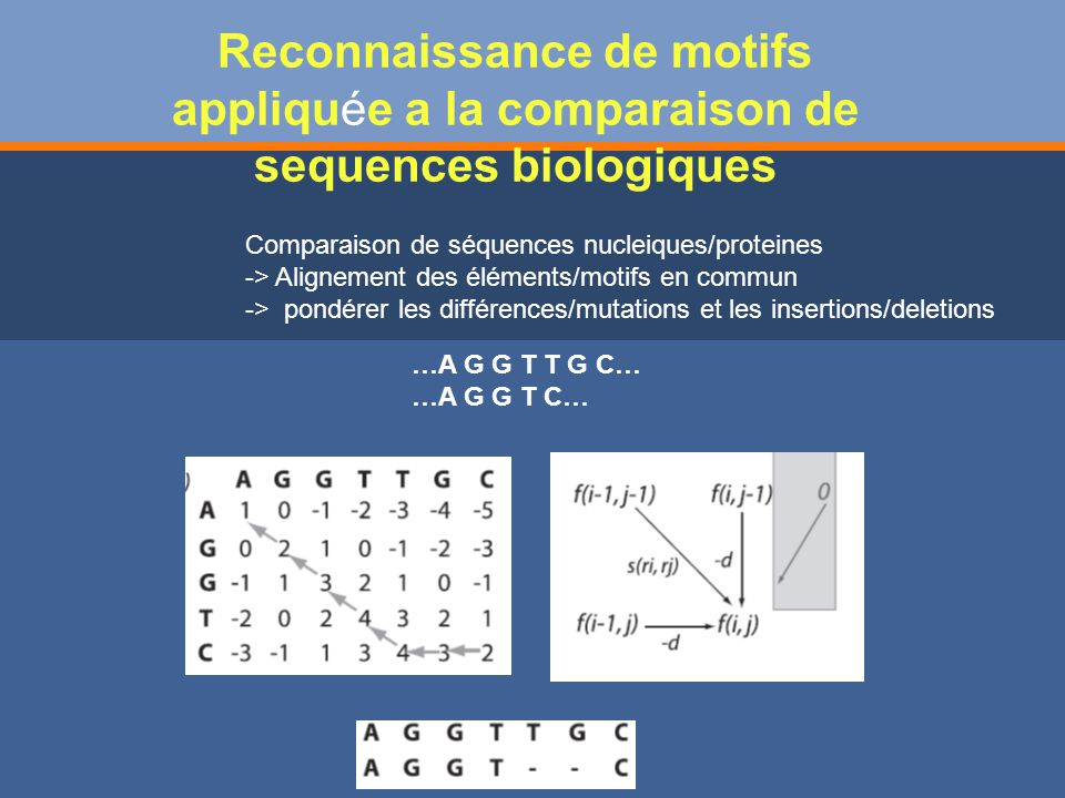 Reconnaissance de motifs appliquée a la comparaison de sequences biologiques