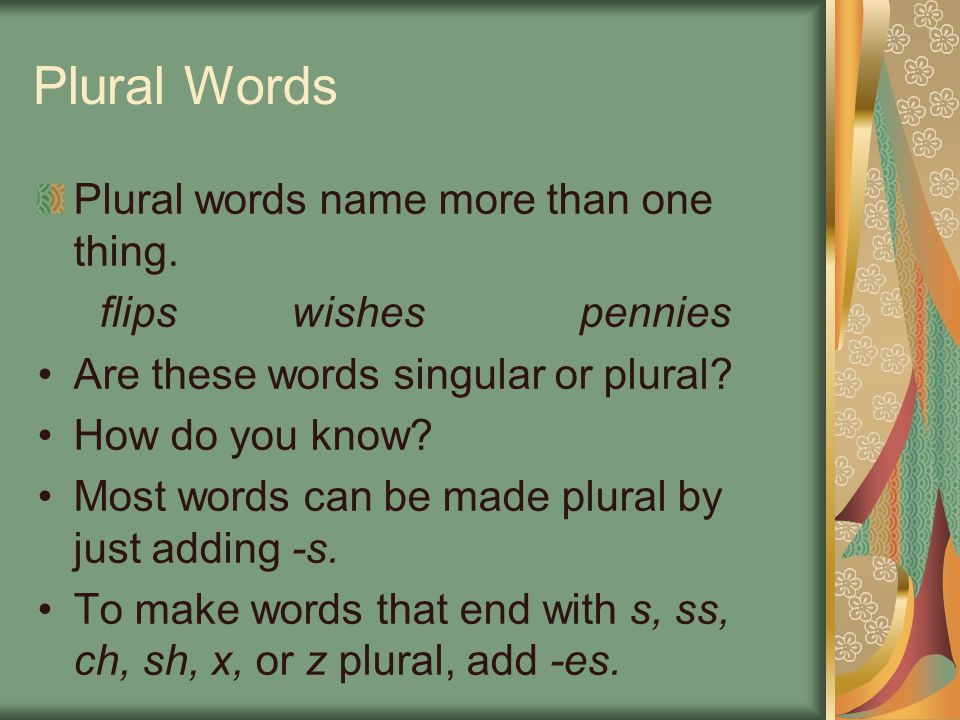 Plural Words Plural words name more than one thing.