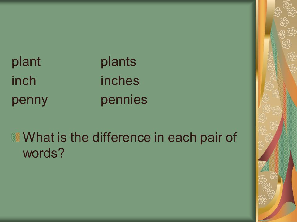 plant plants inch inches penny pennies What is the difference in each pair of words
