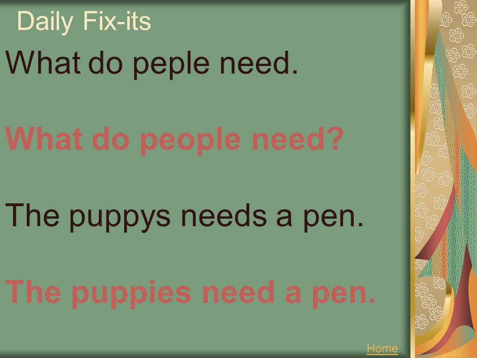 Daily Fix-its What do peple need. What do people need The puppys needs a pen. The puppies need a pen.