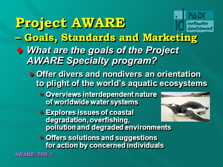Project AWARE – Goals, Standards and Marketing