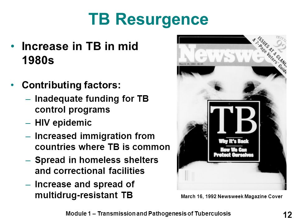 TB Resurgence Increase in TB in mid 1980s Contributing factors: