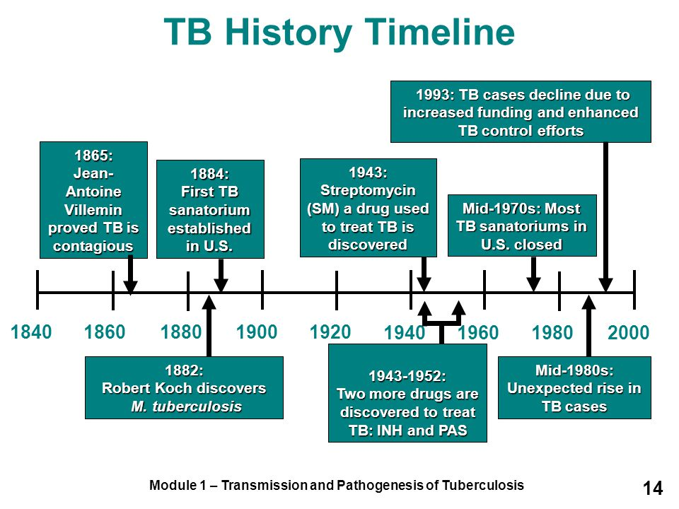 TB History Timeline 1993: TB cases decline due to increased funding and enhanced TB control efforts.