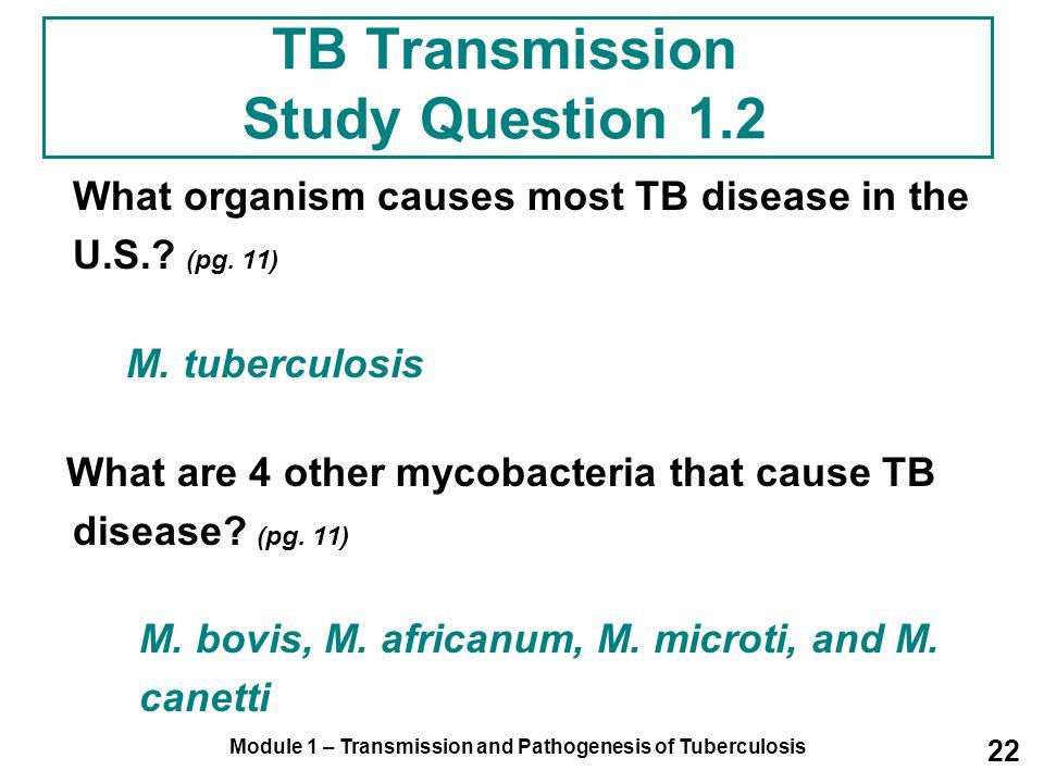 TB Transmission Study Question 1.2