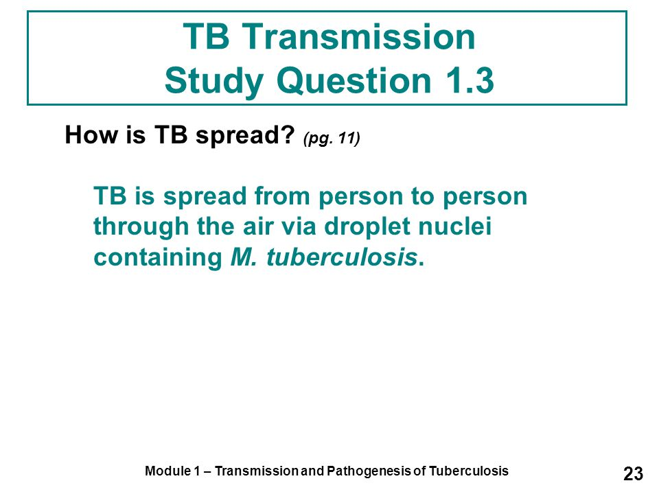 TB Transmission Study Question 1.3