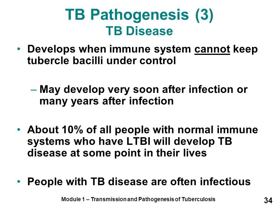 TB Pathogenesis (3) TB Disease