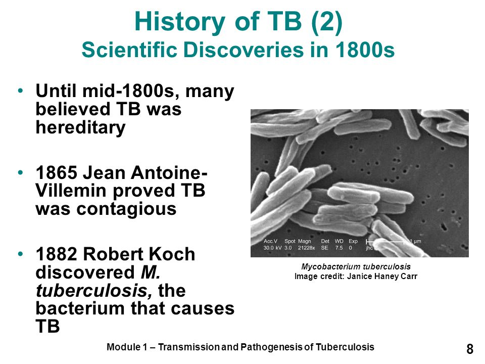 History of TB (2) Scientific Discoveries in 1800s