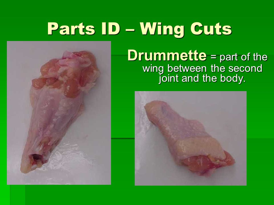Drummette = part of the wing between the second joint and the body.