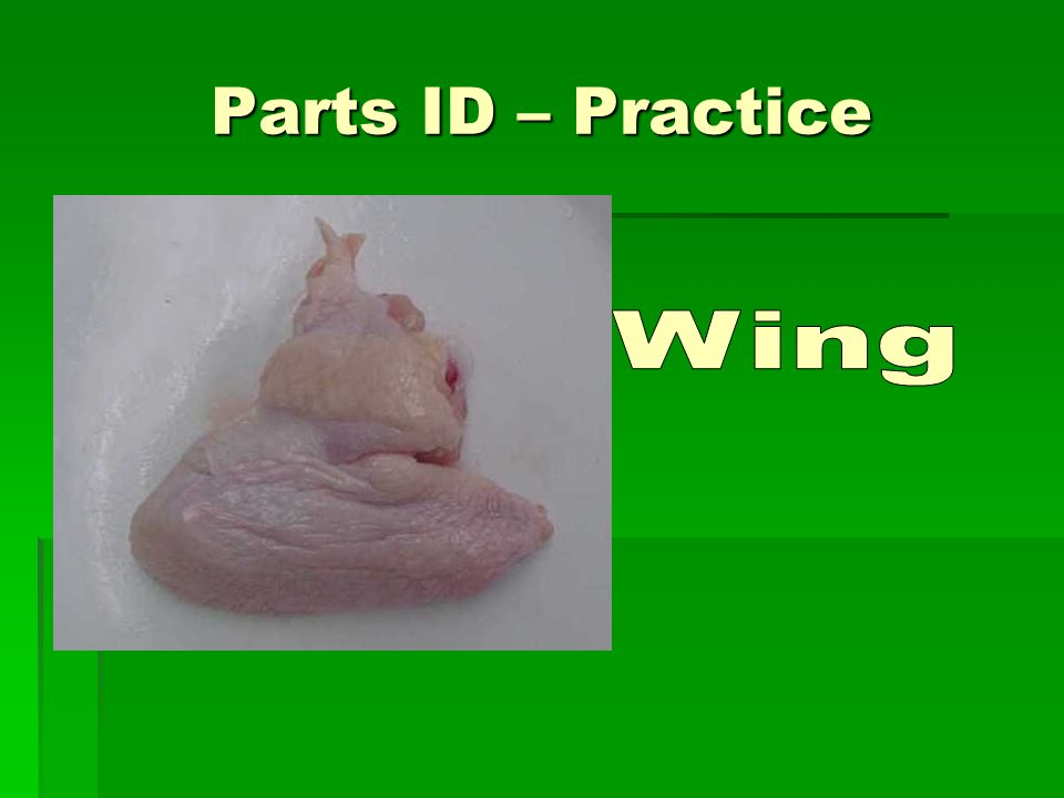 Parts ID – Practice Wing