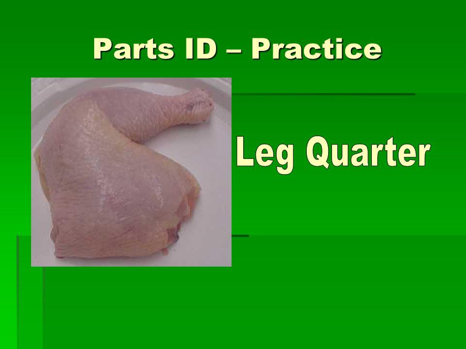 Parts ID – Practice Leg Quarter