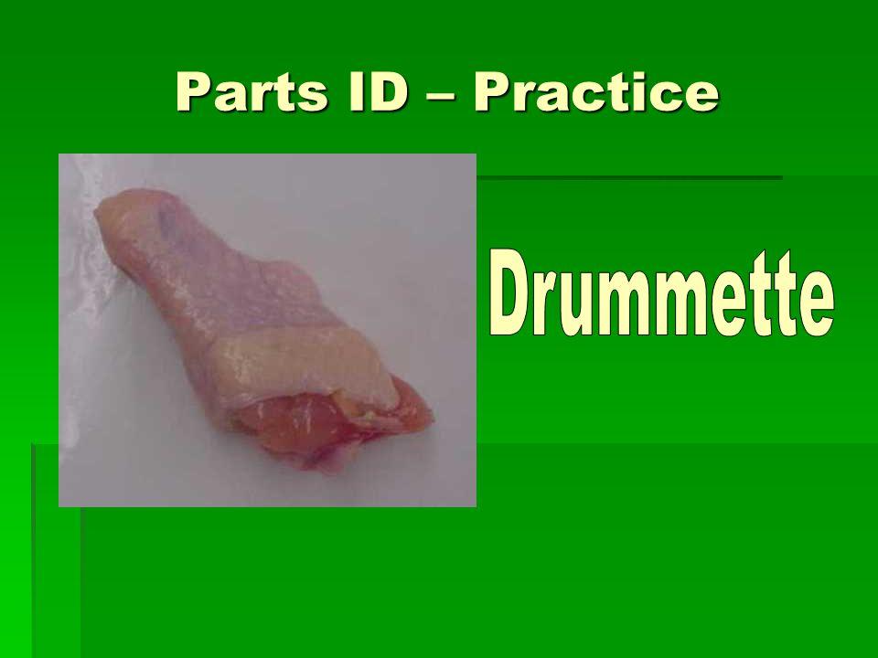 Parts ID – Practice Drummette
