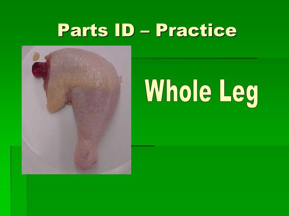 Parts ID – Practice Whole Leg