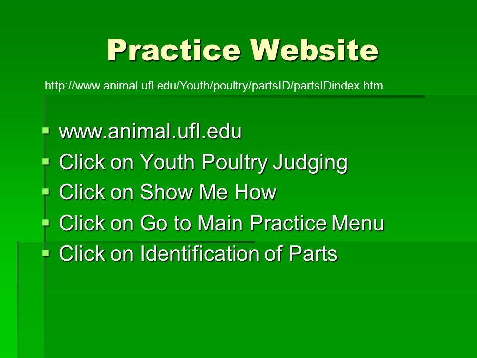 Practice Website www.animal.ufl.edu Click on Youth Poultry Judging