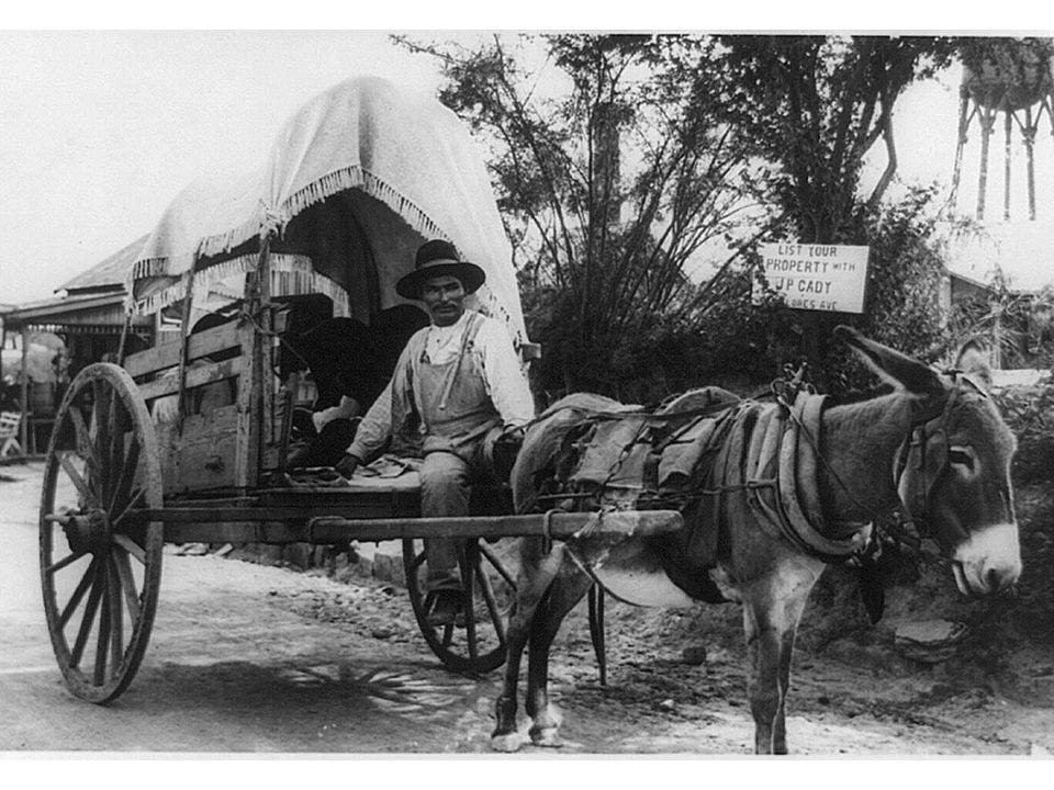 fig18_08.jpg Page 683: An immigrant from Mexico, arriving around 1912 in a cart drawn by a donkey.