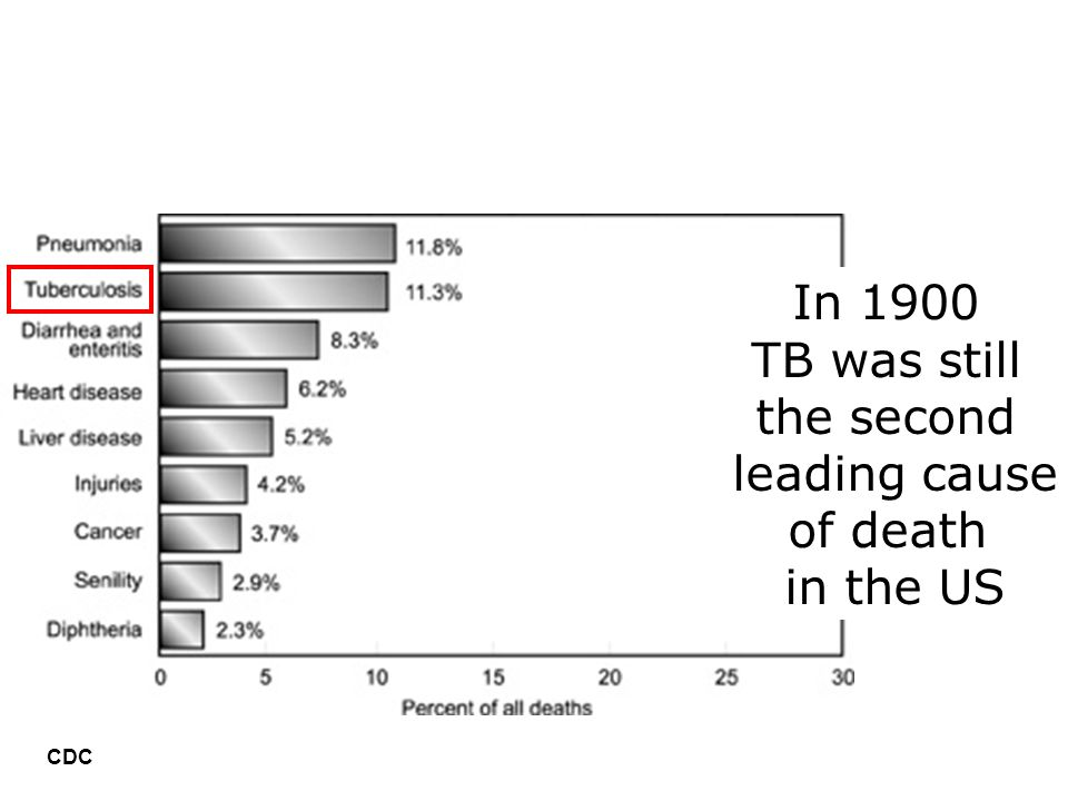 In 1900 TB was still the second leading cause of death in the US CDC