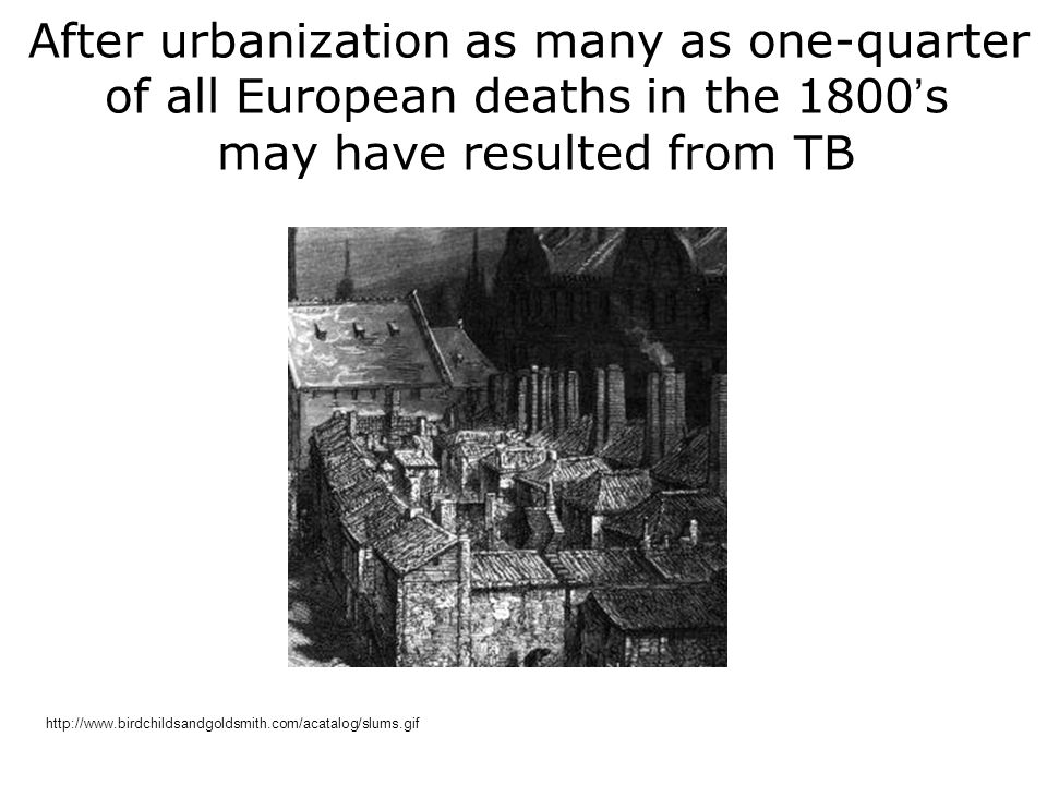 After urbanization as many as one-quarter