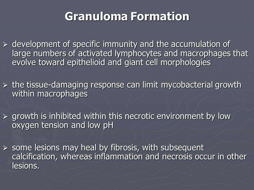 Granuloma Formation