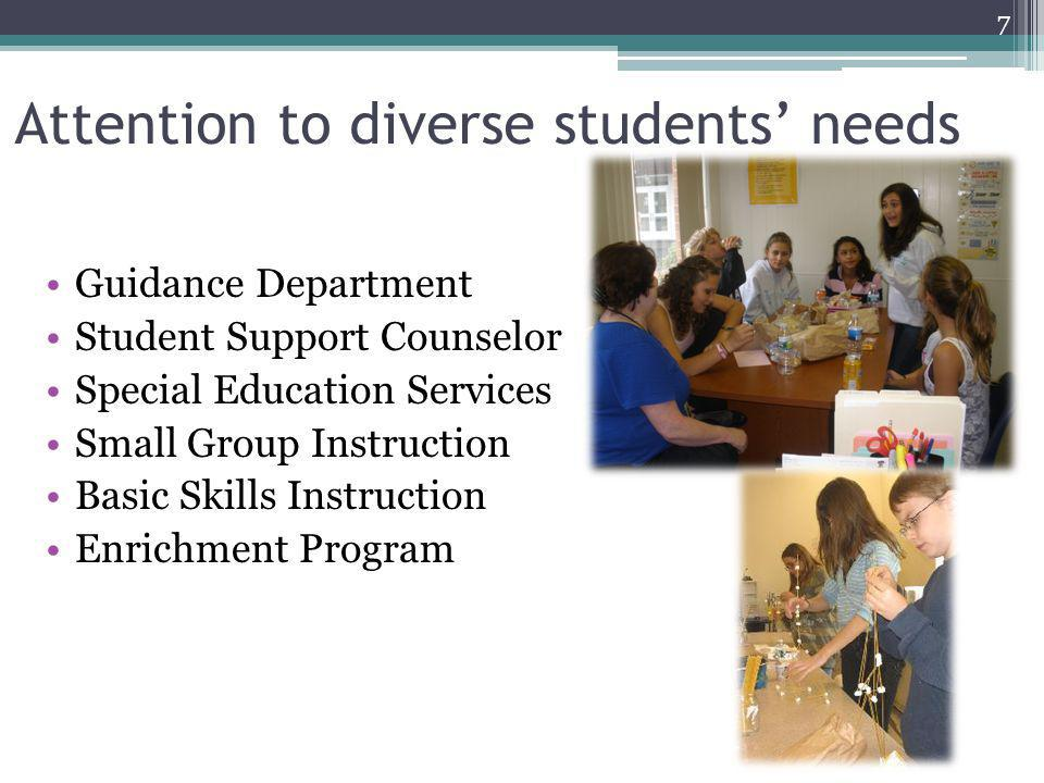 Attention to diverse students' needs