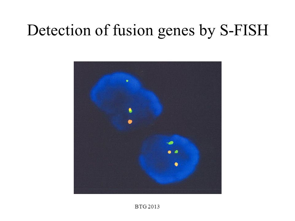 Detection of fusion genes by S-FISH
