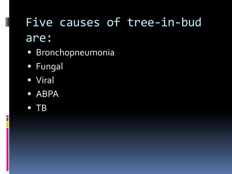 Five causes of tree-in-bud are: