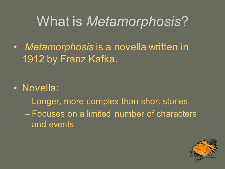 What is Metamorphosis Metamorphosis is a novella written in 1912 by Franz Kafka. Novella: Longer, more complex than short stories.