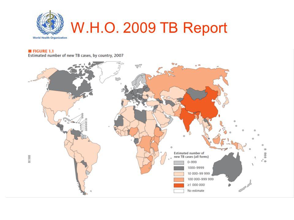 W.H.O. 2009 TB Report
