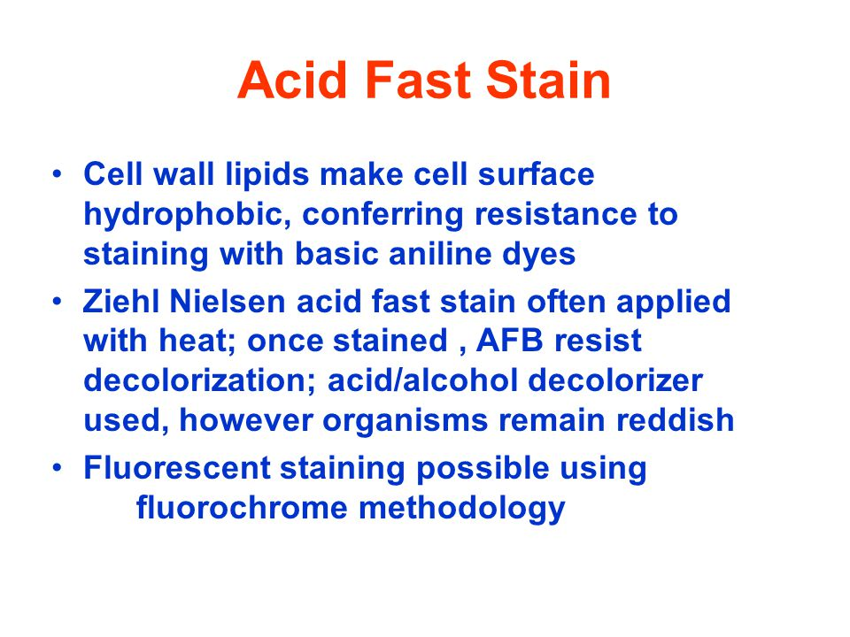 Acid Fast Stain Cell wall lipids make cell surface hydrophobic, conferring resistance to staining with basic aniline dyes.