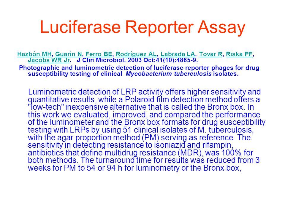 Luciferase Reporter Assay