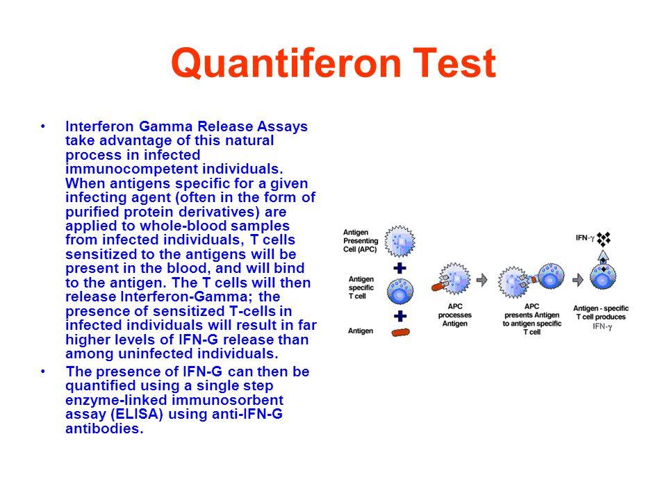 Quantiferon Test