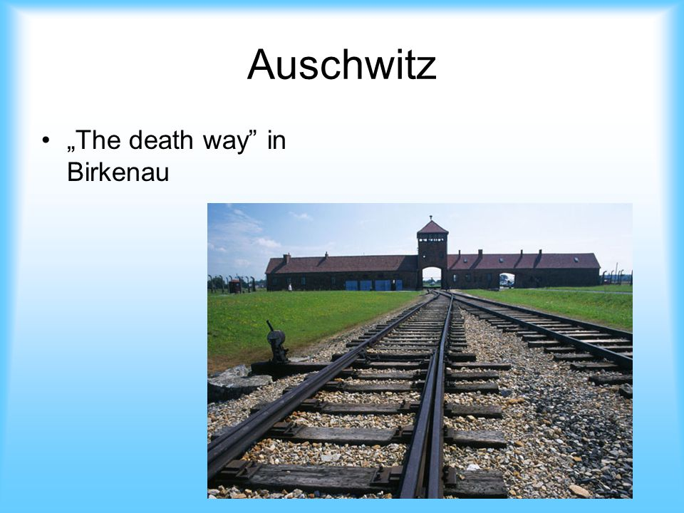 """Auschwitz """"The death way in Birkenau"""