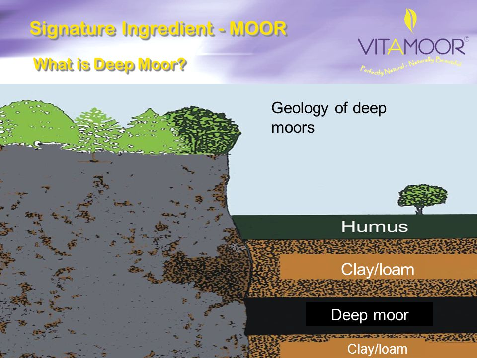 Signature Ingredient - MOOR