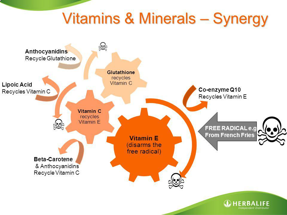 Vitamins & Minerals – Synergy