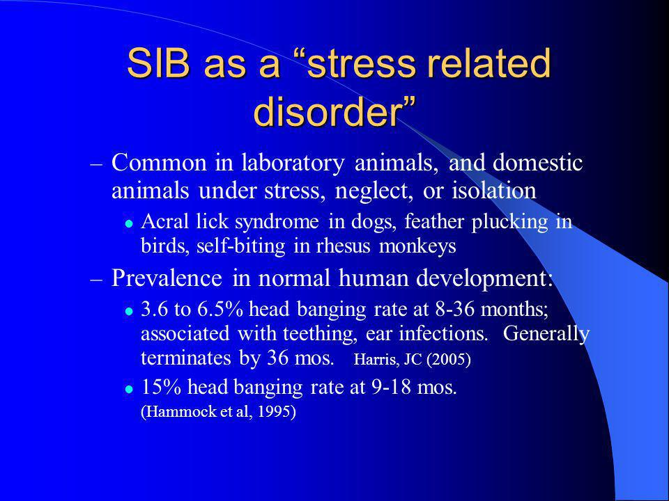SIB as a stress related disorder