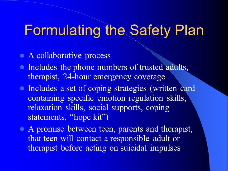 Formulating the Safety Plan