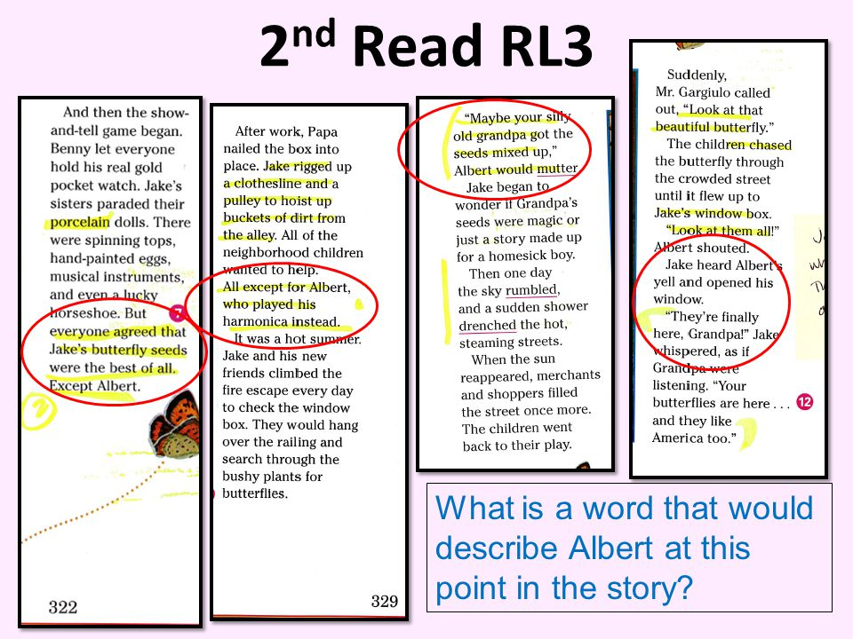 2nd Read RL3 Albert What is a word that would describe Albert at this point in the story
